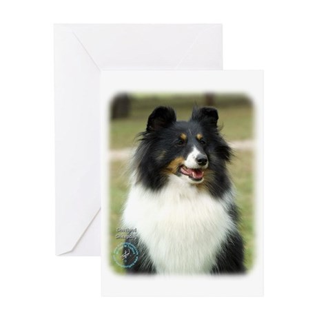 Shetland Sheepdog 9J089D-19 Greeting Card