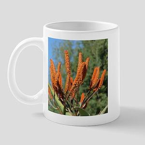 Orange Zimbabwe aloe 1082 - Mug