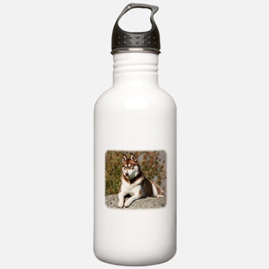 Siberian Husky 9Y773D-064 Water Bottle