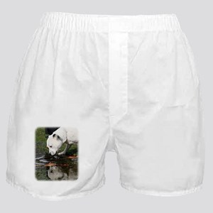 Staffordshire Bull Terrier 9Y773D-315 Boxer Shorts