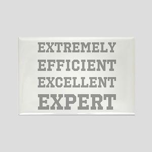 Expert - Slogan. Rectangle Magnet