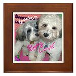 Lowchen Puppy Love - Framed Tile
