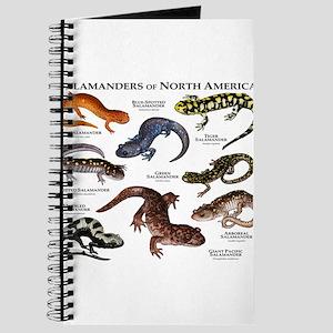 Salamanders of North America Journal