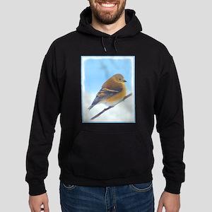 Goldfinch Hoodie (dark)