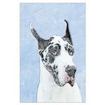 Great Dane (Harlequin) Large Poster