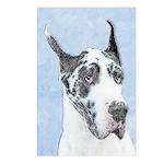 Great Dane (Harlequin) Postcards (Package of 8)