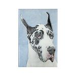 Great Dane (Harlequin) Rectangle Magnet (10 pack)
