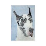 Great Dane (Harlequin) Rectangle Magnet (100 pack)