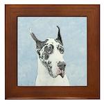 Great Dane (Harlequin) Framed Tile