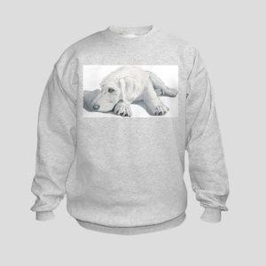 Sleepy Labradoodle Pup Kids Sweatshirt