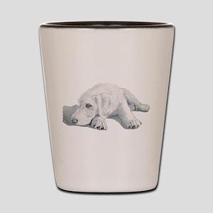 Sleepy Labradoodle Pup Shot Glass