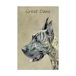 Great Dane (Brindle) Mini Poster Print