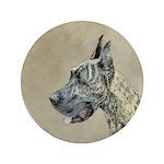 Great Dane (Brindle) 3.5