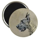 Great Dane (Brindle) 2.25