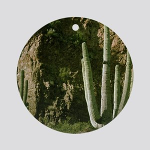 Saguaro And Rocky Cliff Ornament (Round)