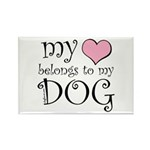 Heart Belongs to Dog Rectangle Magnet (100 pack)