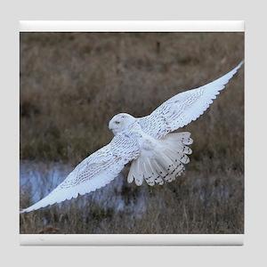 Snowy Owl in flight Tile Coaster