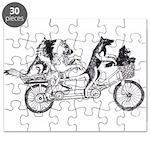 Belgian Bike Puzzle