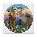 StFrancis-Pony Tile Coaster