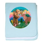 StFrancis-Pony baby blanket