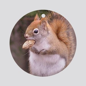 Red Squirrel Eating Ornament (Round)