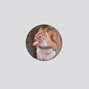Red Squirrel Eating Mini Button