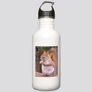 Red Squirrel Eating Stainless Water Bottle 1.0L