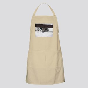 Squirrel in Snow Apron