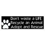 PomRescue .com's Adopt Rescue Sticker Bumper 10pk)