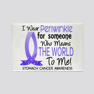 Means World To Me 1 Stomach Cancer Rectangle Magne