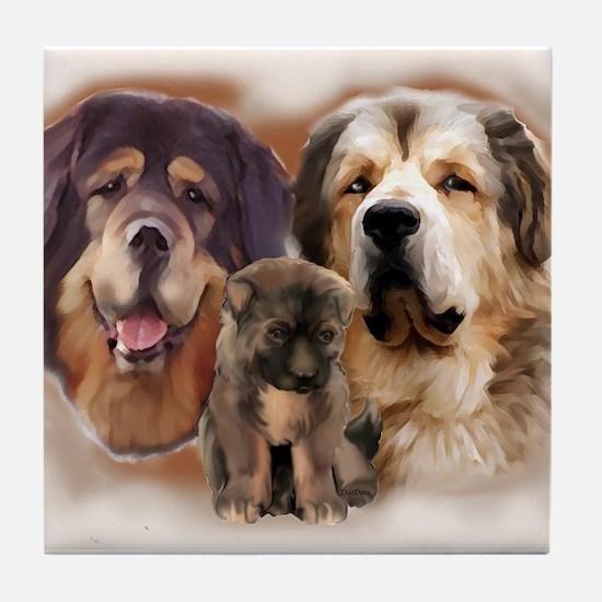 tibetan Mastiff family group Tile Coaster