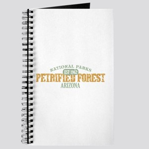 Petrified Forest Arizona Journal