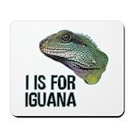 I Is For Iguana Mousepad