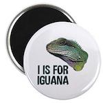 I Is For Iguana Magnet
