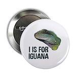 I Is For Iguana 2.25