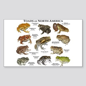 Toads of North America Sticker (Rectangle)