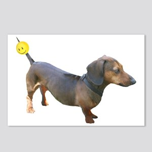 Chewy Antenna Ball Dachshund Postcards (Package o