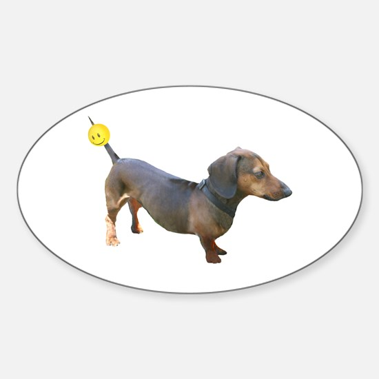 Chewy Antenna Ball Dachshund Oval Decal