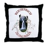 Reichenbach Throw Pillow