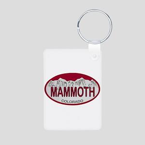 Mammoth Colo Plate Aluminum Photo Keychain