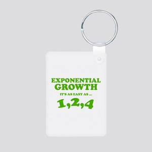 Exponential Growth Aluminum Photo Keychain