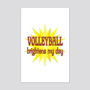 Volleyball Brightens Mini Poster Print