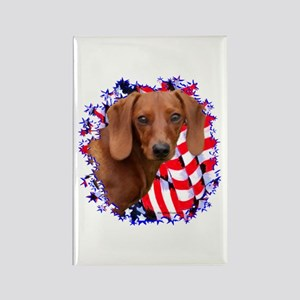 Doxie 3 Rectangle Magnet