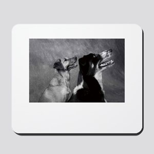 Dog Smiles - Smiling Dogs Mousepad
