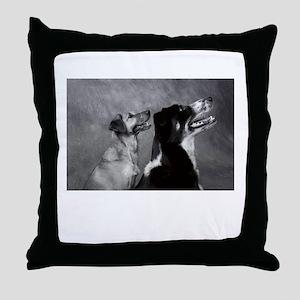 Dog Smiles - Smiling Dogs Throw Pillow