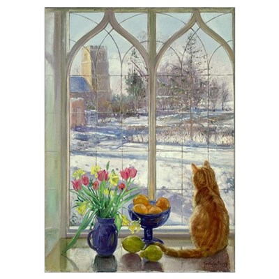 Snow Shadows and Cat Poster