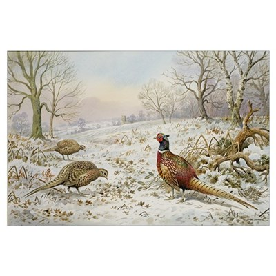 Pheasant and Partridges in a Snowy Landscape Framed Print