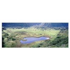 High angle view of a valley, Waipio Valley, Hamaku Poster