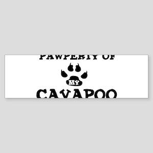 Pawperty: Cavapoo Bumper Sticker