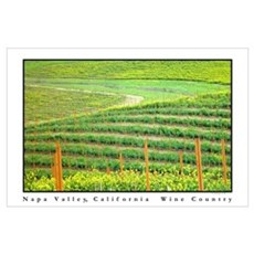 napa valley wine country Wall Art Poster